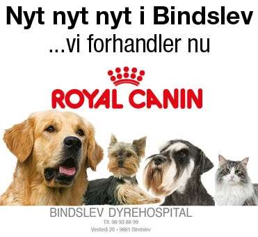 royalcaninnews